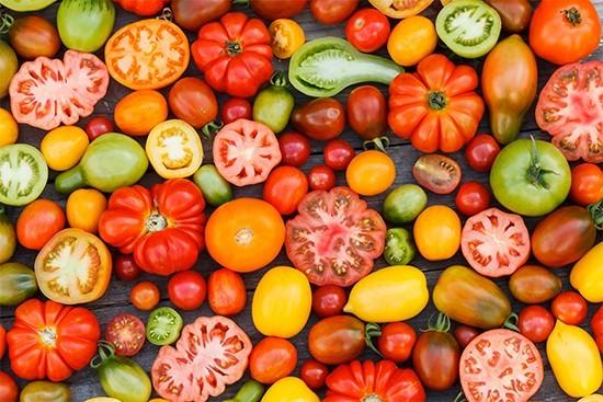 Coltivare pomodori quando piantare le piantine nell orto for Piantare pomodori